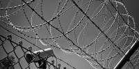 Barbed-wire-1670222_640_thumb_main - Sibnovosti.ru
